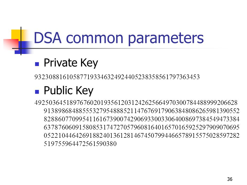 36 DSA common parameters Private Key 932308816105877193346324924405238358561797363453 Public Key 49250364518976760201935612031242625664970300784488999