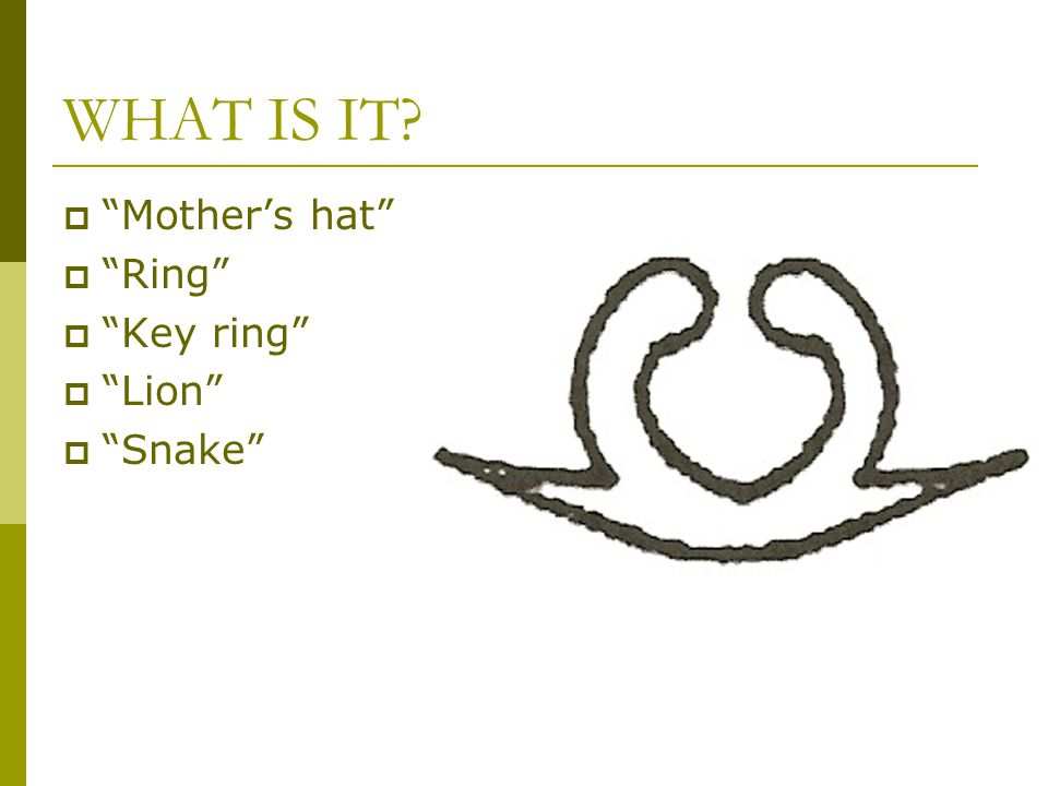WHAT IS IT  Mother's hat  Ring  Key ring  Lion  Snake