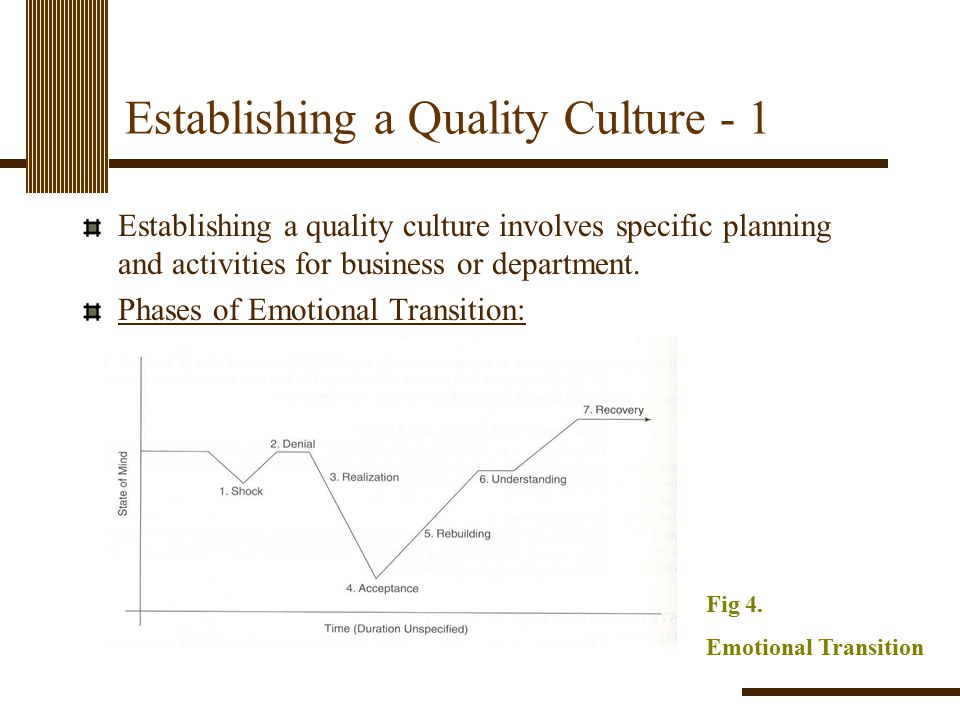 Establishing a Quality Culture - 1 Establishing a quality culture involves specific planning and activities for business or department. Phases of Emot