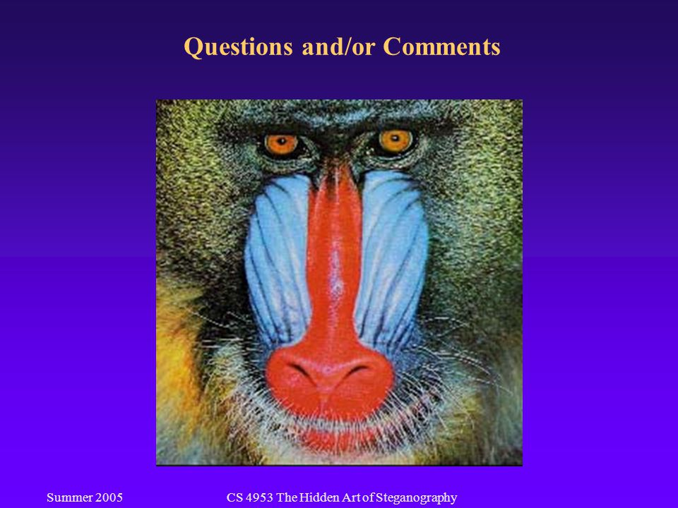 Summer 2005CS 4953 The Hidden Art of Steganography Questions and/or Comments