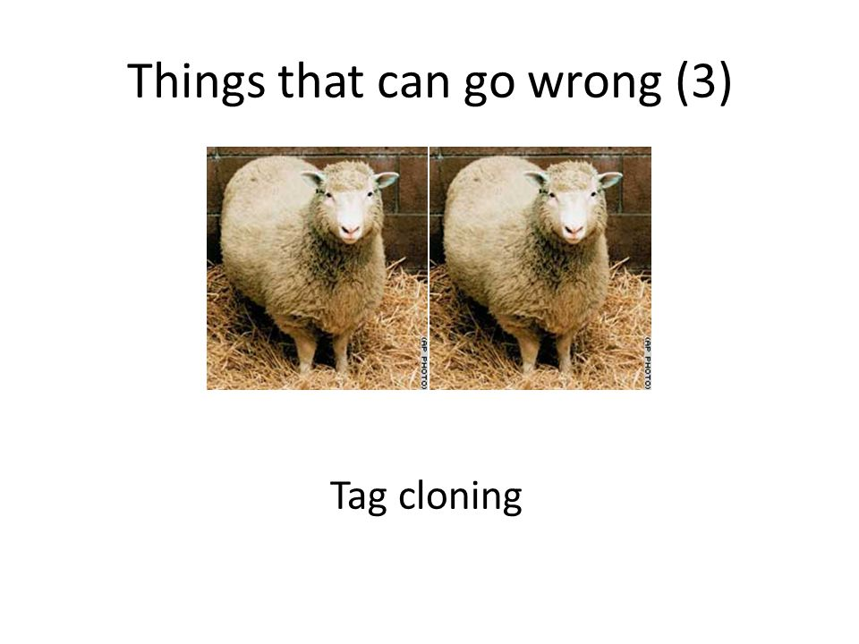 Things that can go wrong (3) Tag cloning