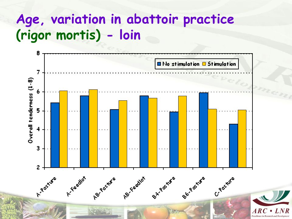 Age, variation in abattoir practice (rigor mortis) - loin