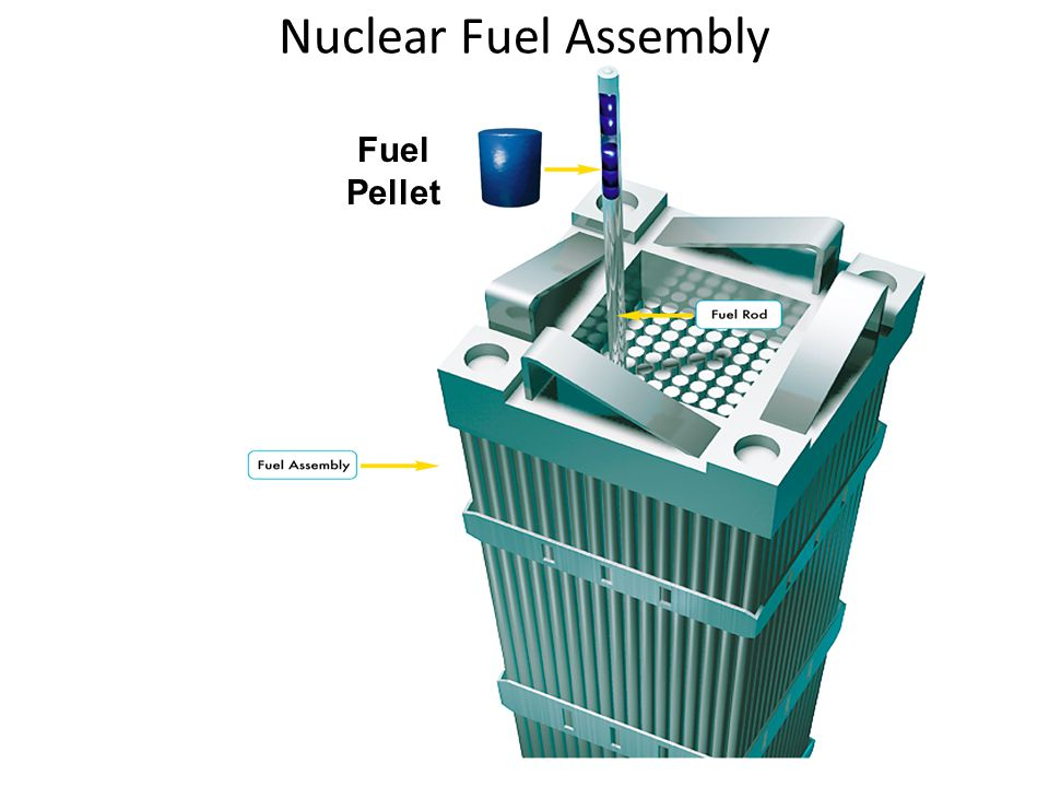 Nuclear Fuel Assembly Fuel Pellet