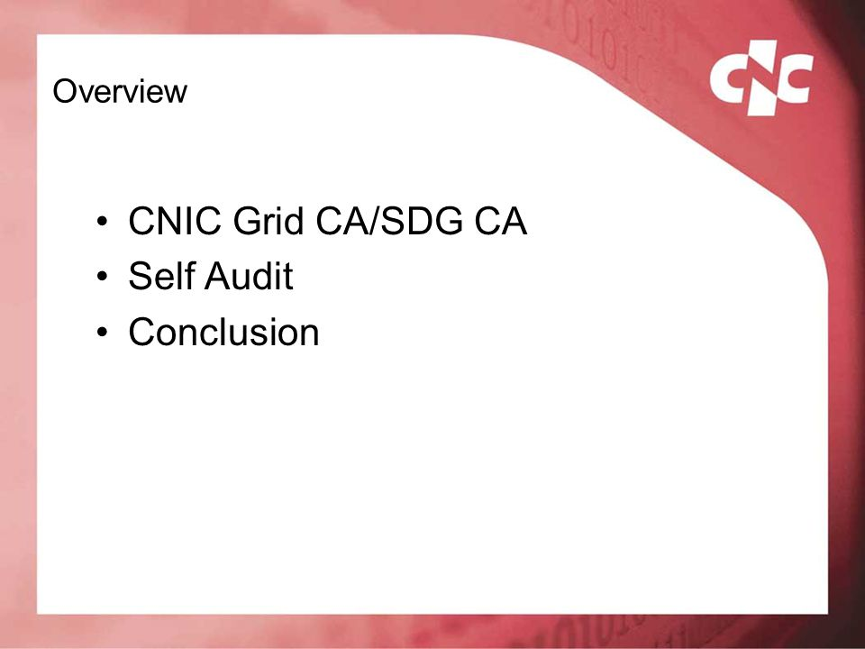 Overview CNIC Grid CA/SDG CA Self Audit Conclusion