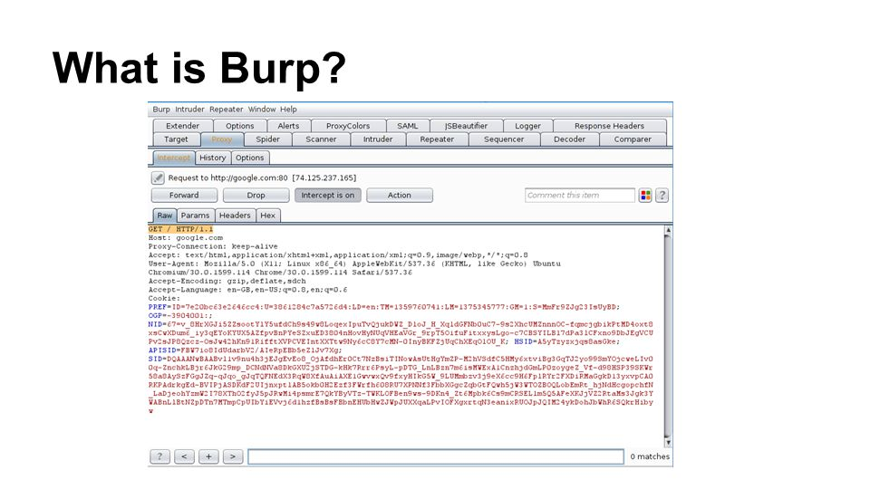 What is Burp?