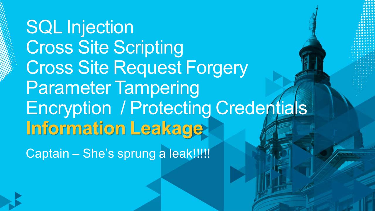 Information Leakage SQL Injection Cross Site Scripting Cross Site Request Forgery Parameter Tampering Encryption / Protecting Credentials Information Leakage