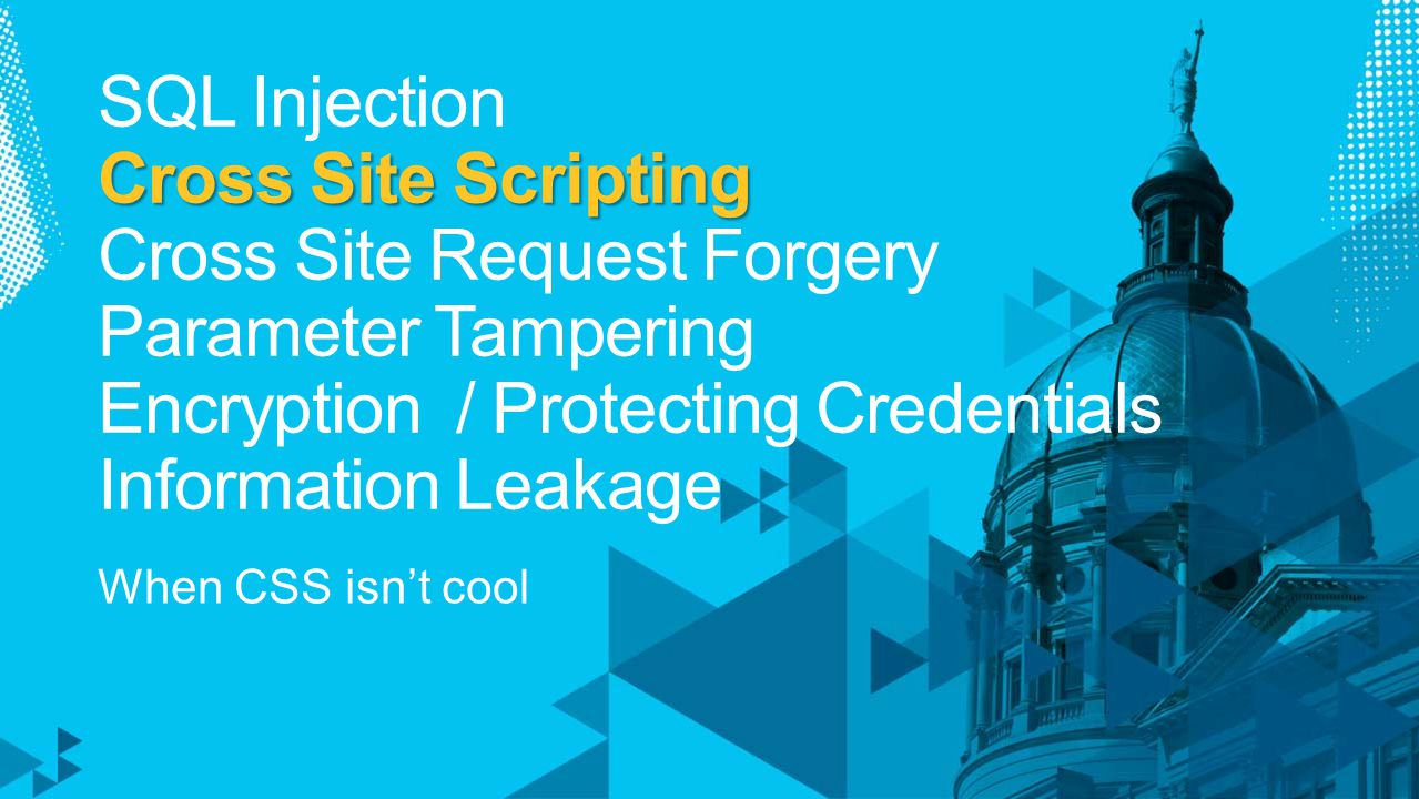 Cross Site Scripting SQL Injection Cross Site Scripting Cross Site Request Forgery Parameter Tampering Encryption / Protecting Credentials Information Leakage