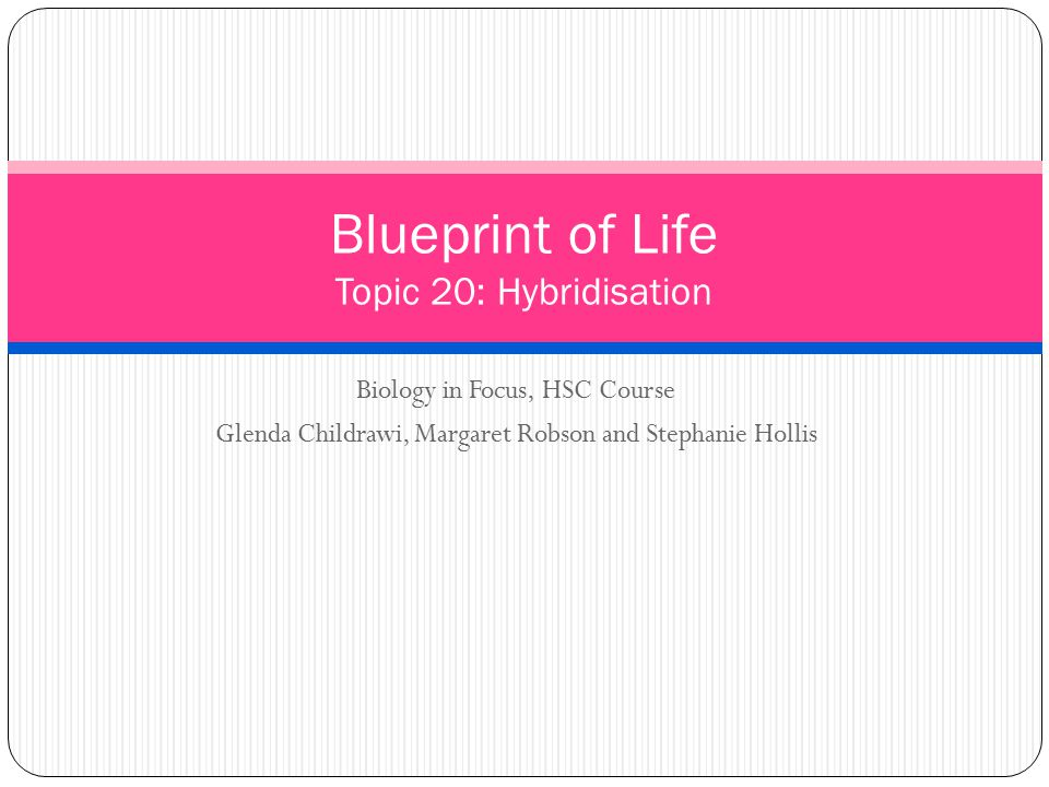 Biology in Focus, HSC Course Glenda Childrawi, Margaret Robson and Stephanie Hollis Blueprint of Life Topic 20: Hybridisation