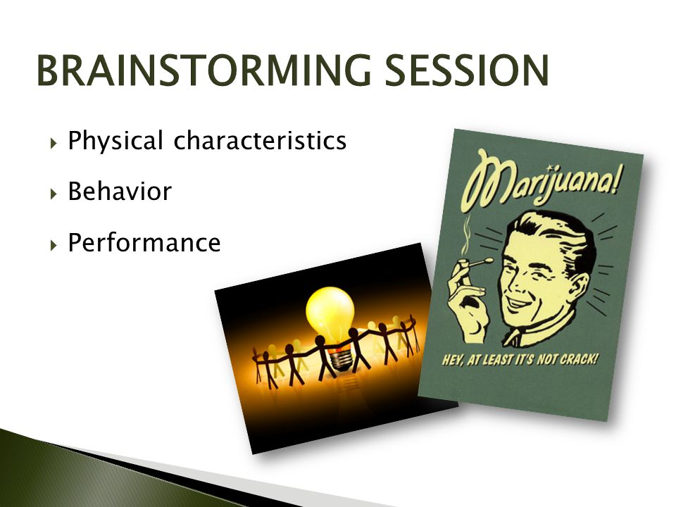  Physical characteristics  Behavior  Performance