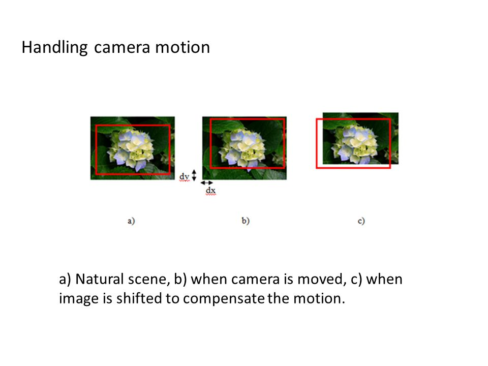 a) Natural scene, b) when camera is moved, c) when image is shifted to compensate the motion. Handling camera motion