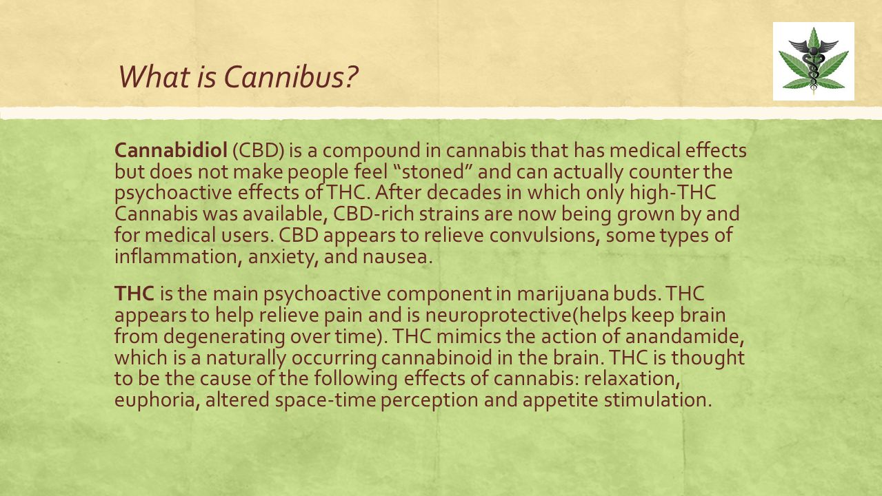 """What is Cannibus? Cannabidiol (CBD) is a compound in cannabis that has medical effects but does not make people feel """"stoned"""" and can actually counter"""