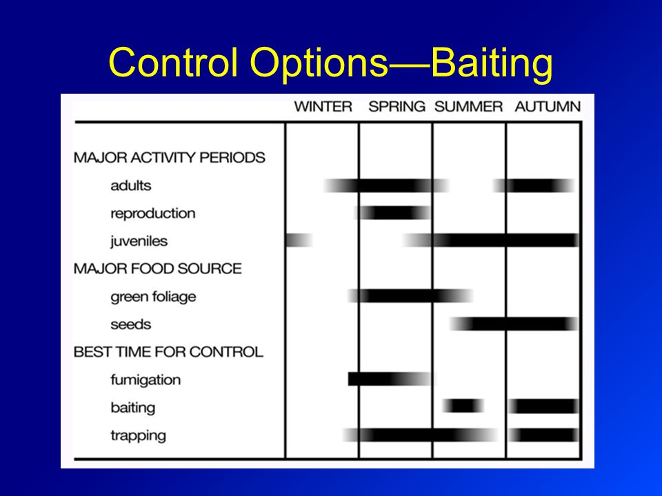 Control Options—Baiting