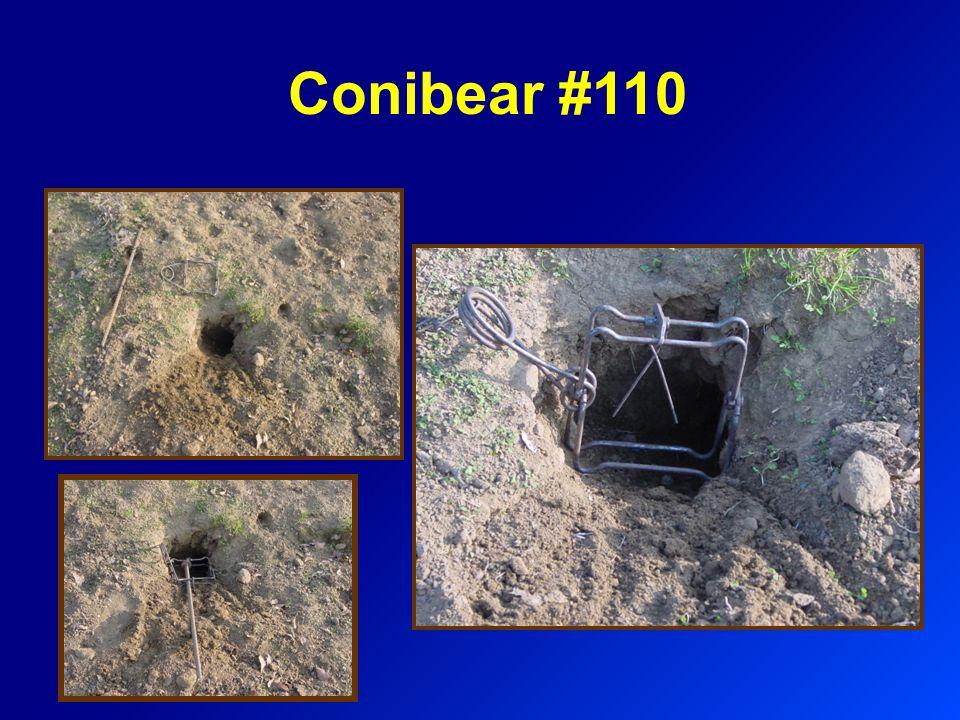 Conibear #110