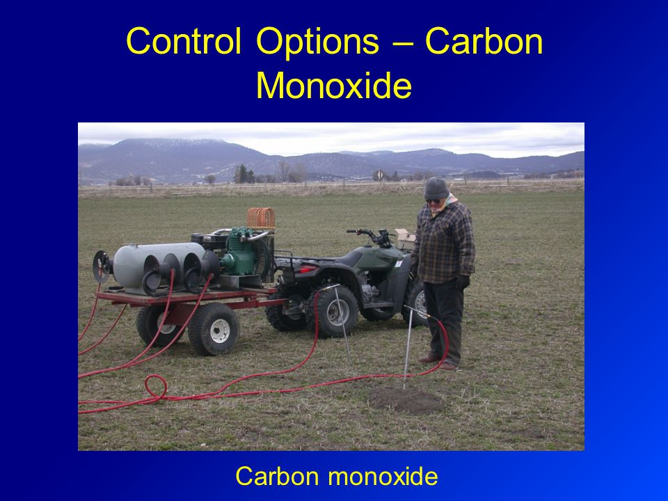 Control Options – Carbon Monoxide Carbon monoxide