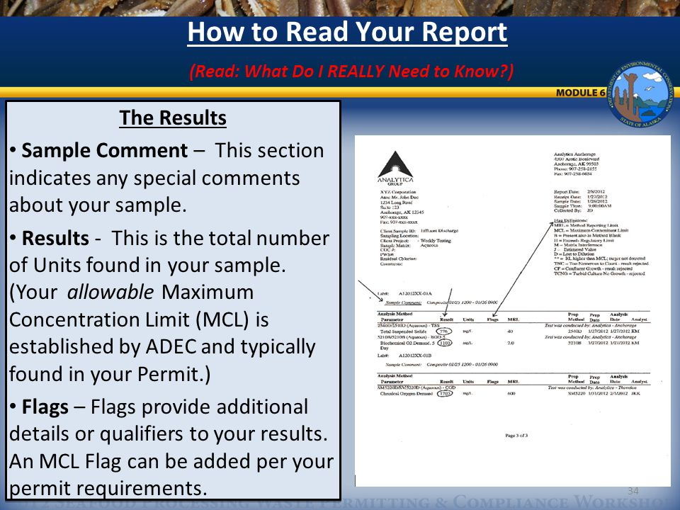 34 How to Read Your Report (Read: What Do I REALLY Need to Know?) The Results Sample Comment – This section indicates any special comments about your sample.