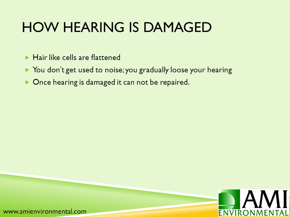 HOW HEARING IS DAMAGED  Hair like cells are flattened  You don't get used to noise; you gradually loose your hearing  Once hearing is damaged it can not be repaired.