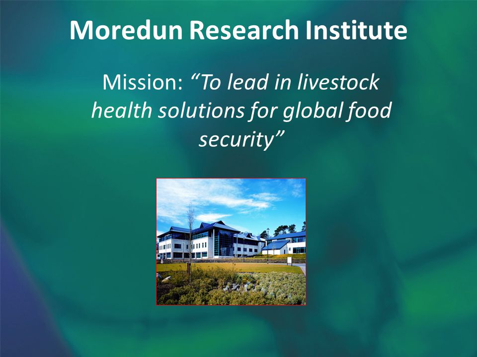 Moredun Research Institute Mission: To lead in livestock health solutions for global food security