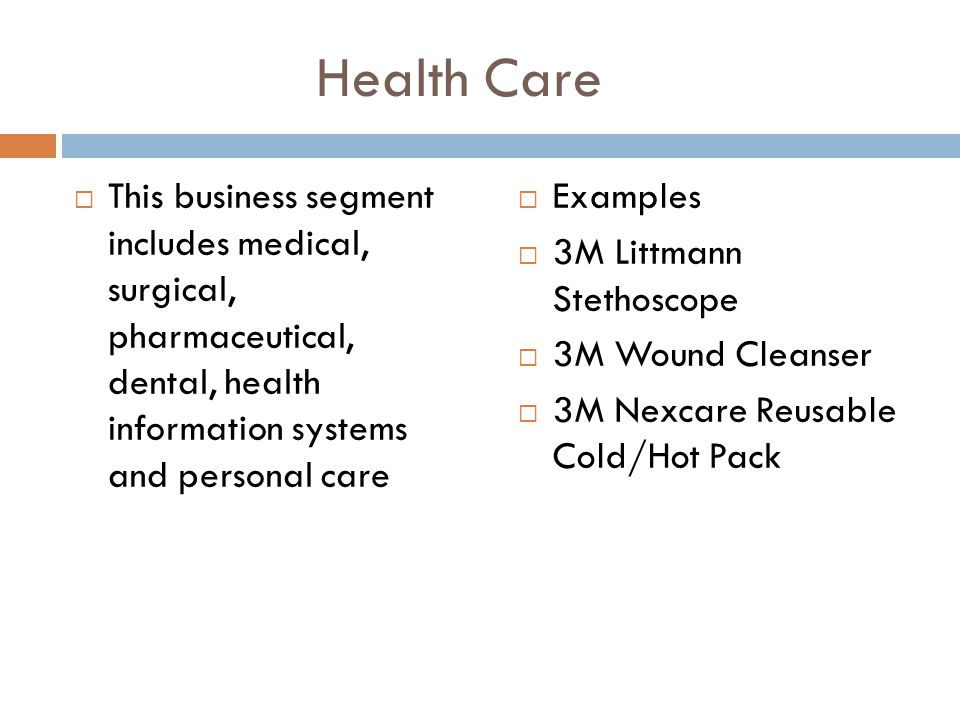 Health Care  This business segment includes medical, surgical, pharmaceutical, dental, health information systems and personal care  Examples  3M L