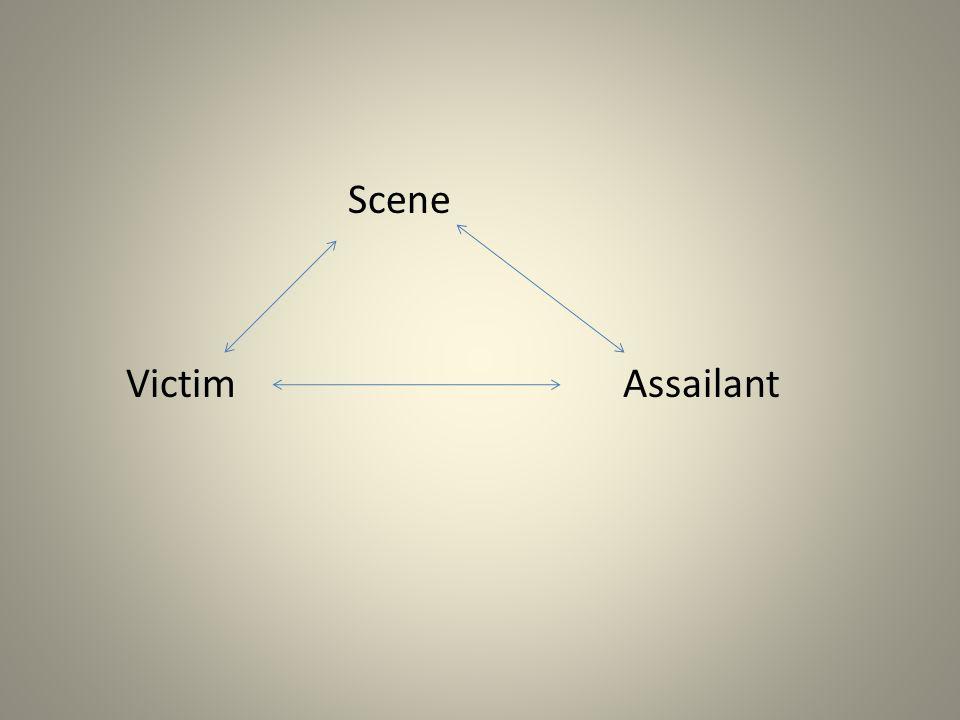 Scene Victim Assailant