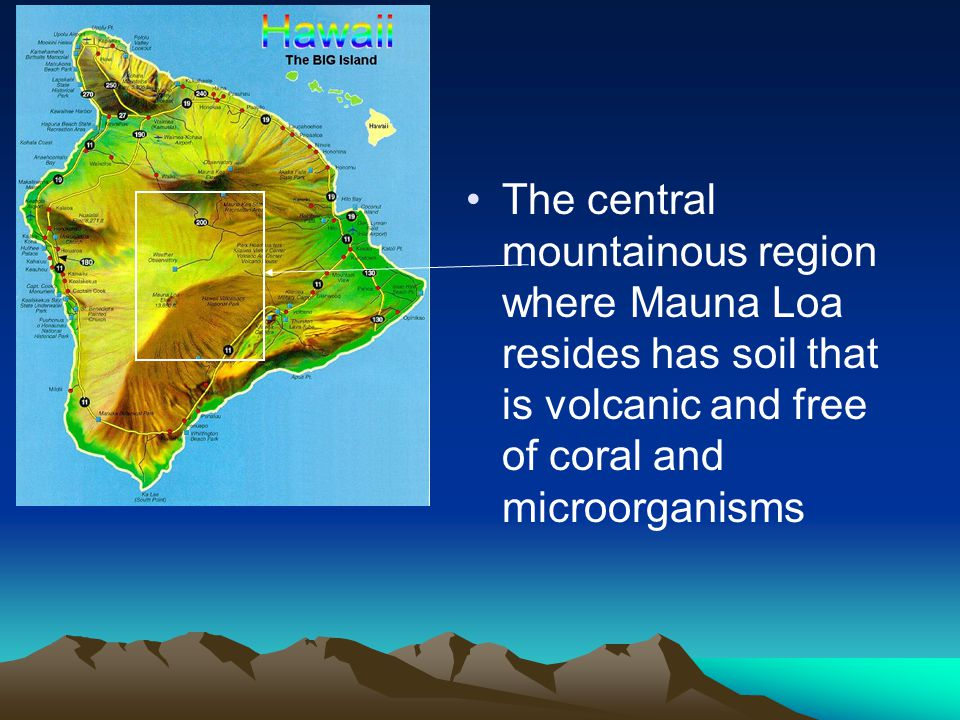 The central mountainous region where Mauna Loa resides has soil that is volcanic and free of coral and microorganisms