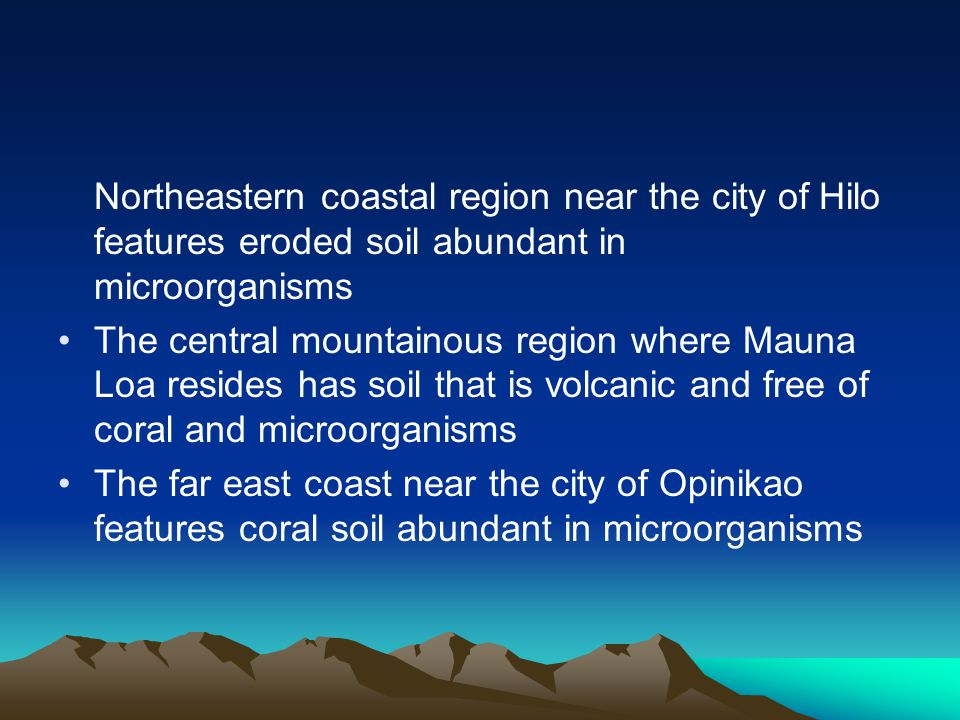 Northeastern coastal region near the city of Hilo features eroded soil abundant in microorganisms The central mountainous region where Mauna Loa resid