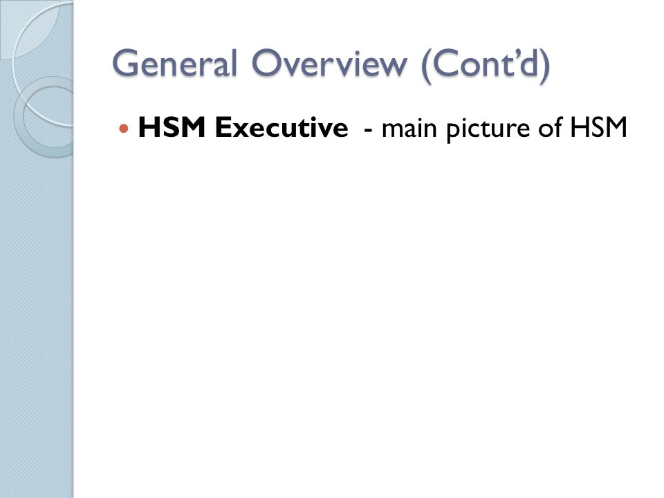 General Overview (Cont'd) HSM Executive - main picture of HSM