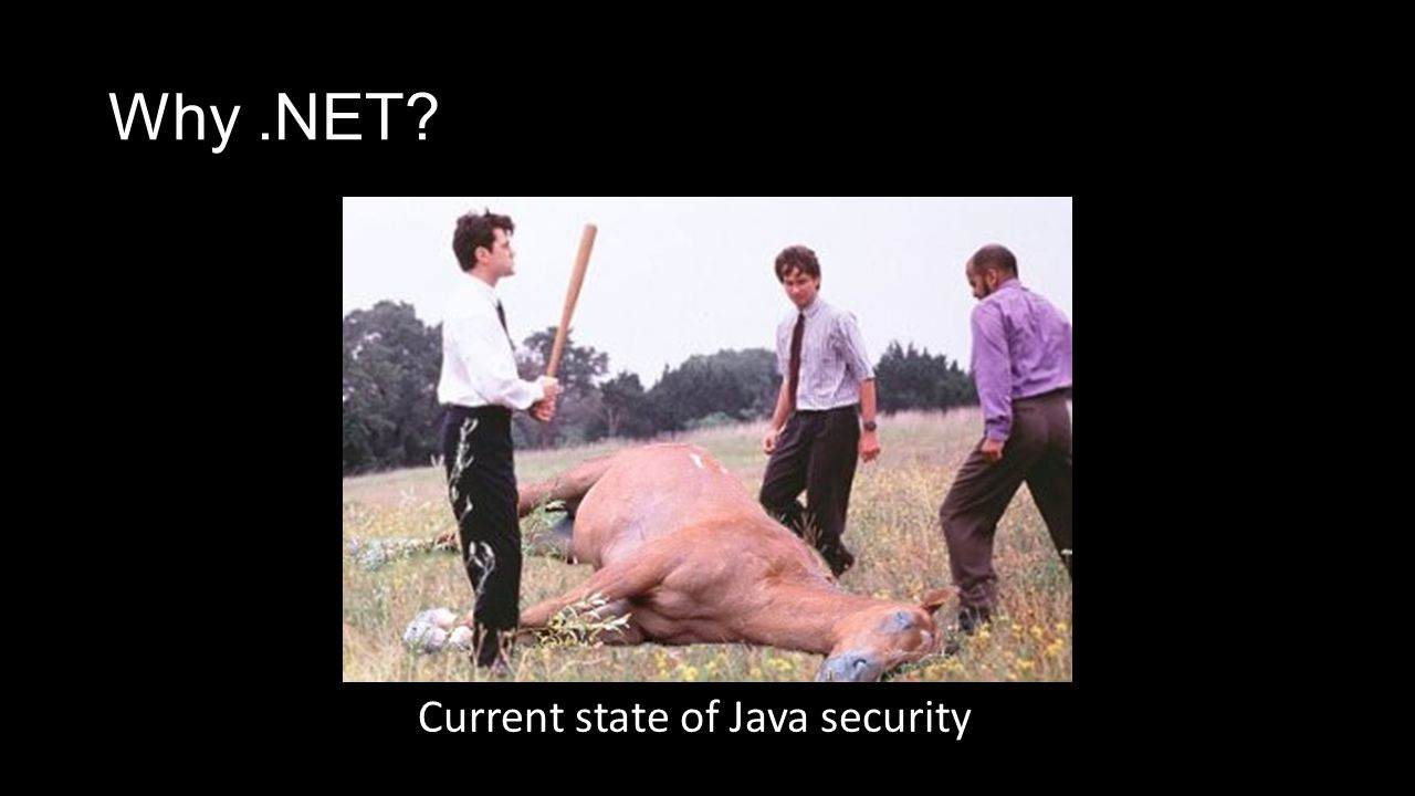 Why.NET? Current state of Java security