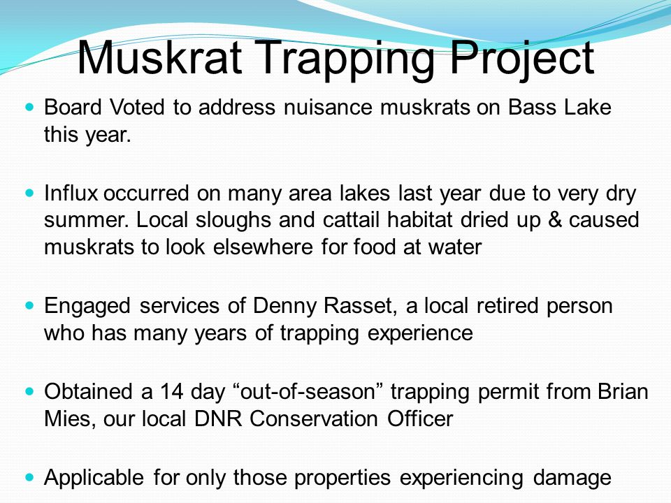 Muskrat Trapping Project Board Voted to address nuisance muskrats on Bass Lake this year.