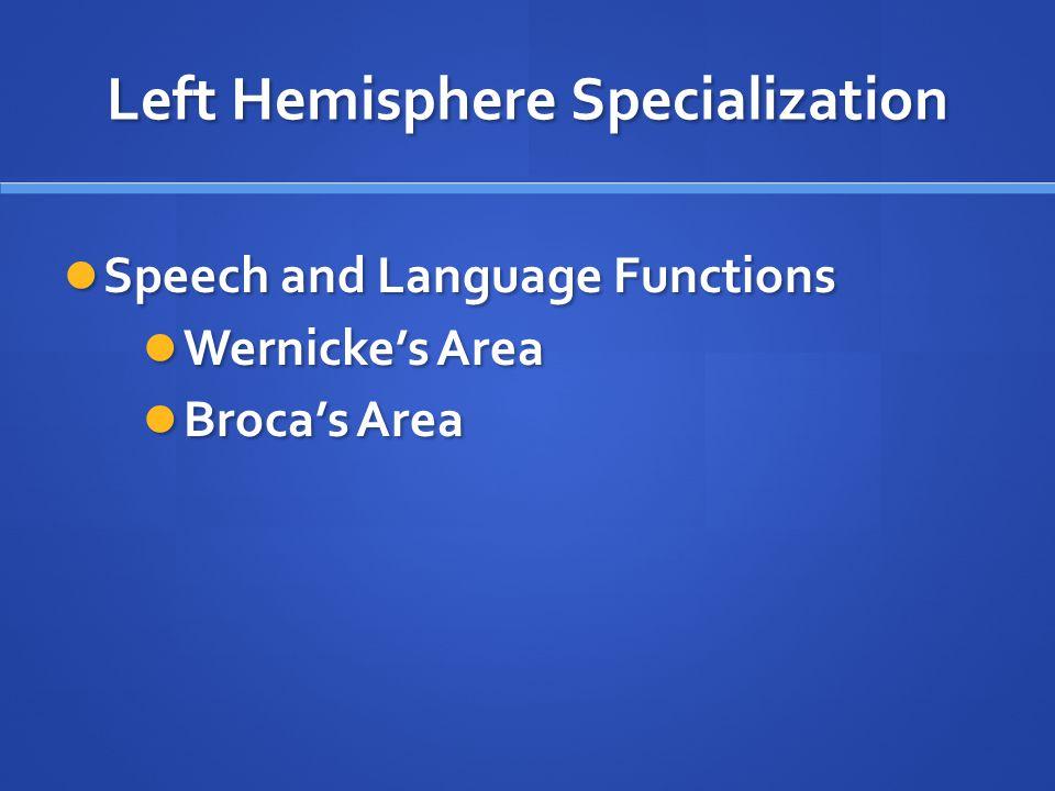Left Hemisphere Specialization Speech and Language Functions Speech and Language Functions Wernicke's Area Wernicke's Area Broca's Area Broca's Area