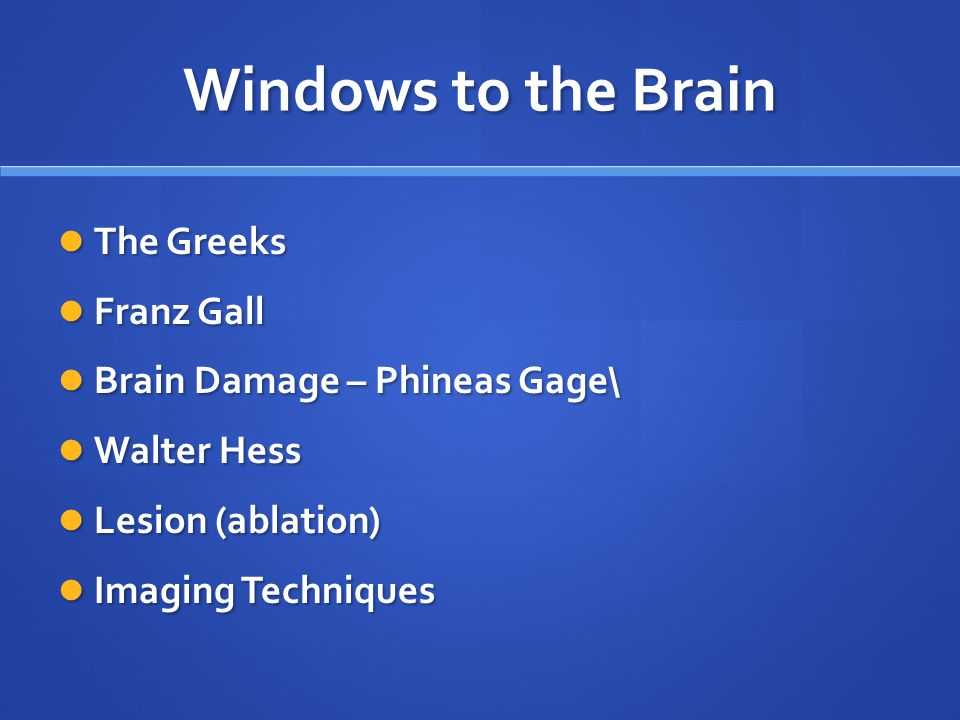 Windows to the Brain The Greeks The Greeks Franz Gall Franz Gall Brain Damage – Phineas Gage\ Brain Damage – Phineas Gage\ Walter Hess Walter Hess Les