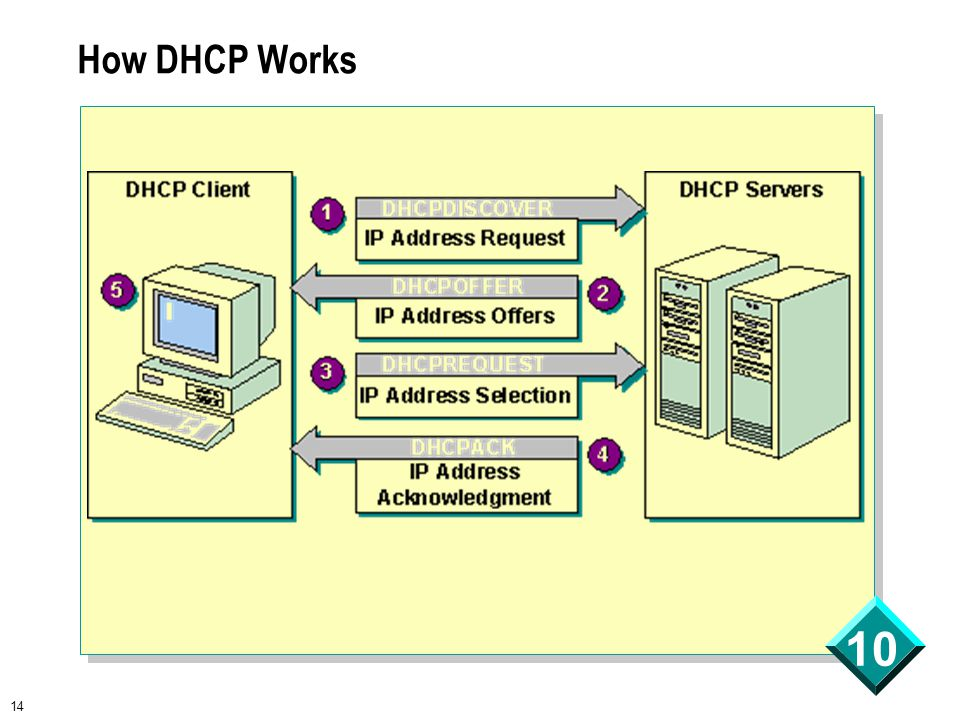 14 10 How DHCP Works