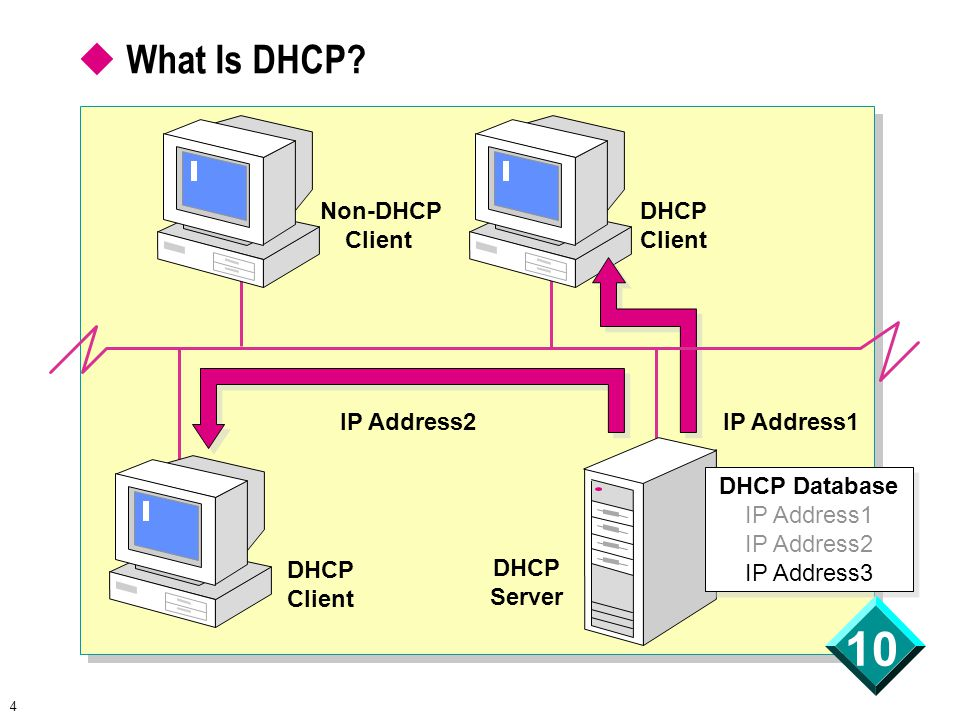 4 10 DHCP Database IP Address1 IP Address2 IP Address3 DHCP Database IP Address1 IP Address2 IP Address3  What Is DHCP.