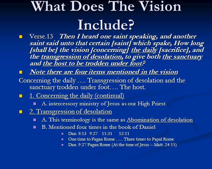 What Does The Vision Include.