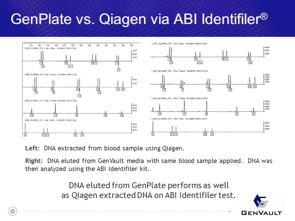 GenPlate vs. Qiagen via ABI Identifiler ® Left: DNA extracted from blood sample using Qiagen.