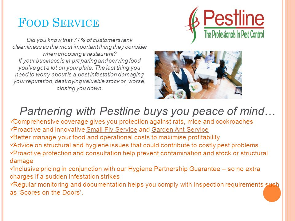 F OOD S ERVICE Partnering with Pestline buys you peace of mind… Comprehensive coverage gives you protection against rats, mice and cockroaches Proactive and innovative Small Fly Service and Garden Ant ServiceSmall Fly ServiceGarden Ant Service Better manage your food and operational costs to maximise profitability Advice on structural and hygiene issues that could contribute to costly pest problems Proactive protection and consultation help prevent contamination and stock or structural damage Inclusive pricing in conjunction with our Hygiene Partnership Guarantee – so no extra charges if a sudden infestation strikes Regular monitoring and documentation helps you comply with inspection requirements such as 'Scores on the Doors'.