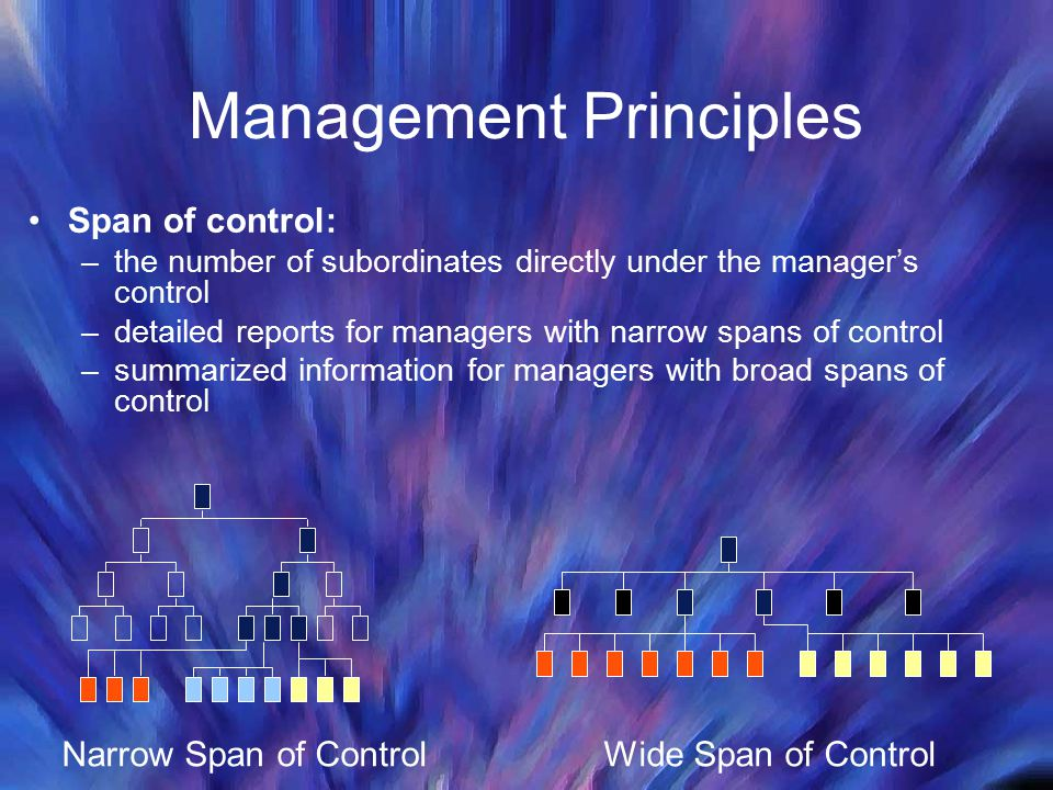 Management Principles Span of control: –the number of subordinates directly under the manager's control –detailed reports for managers with narrow spans of control –summarized information for managers with broad spans of control Narrow Span of ControlWide Span of Control