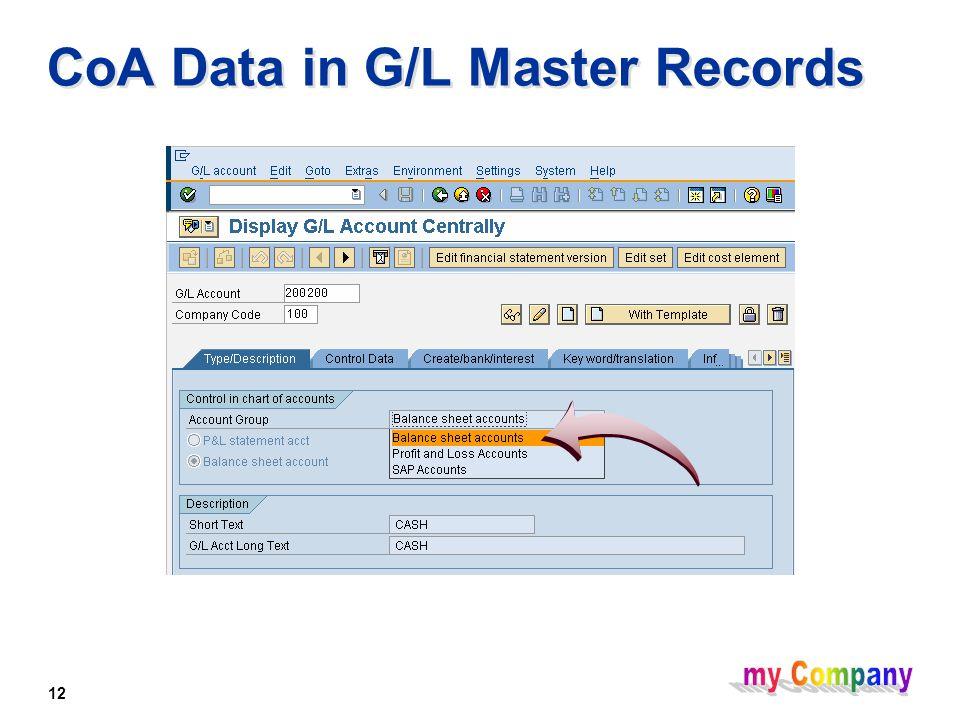 12 CoA Data in G/L Master Records