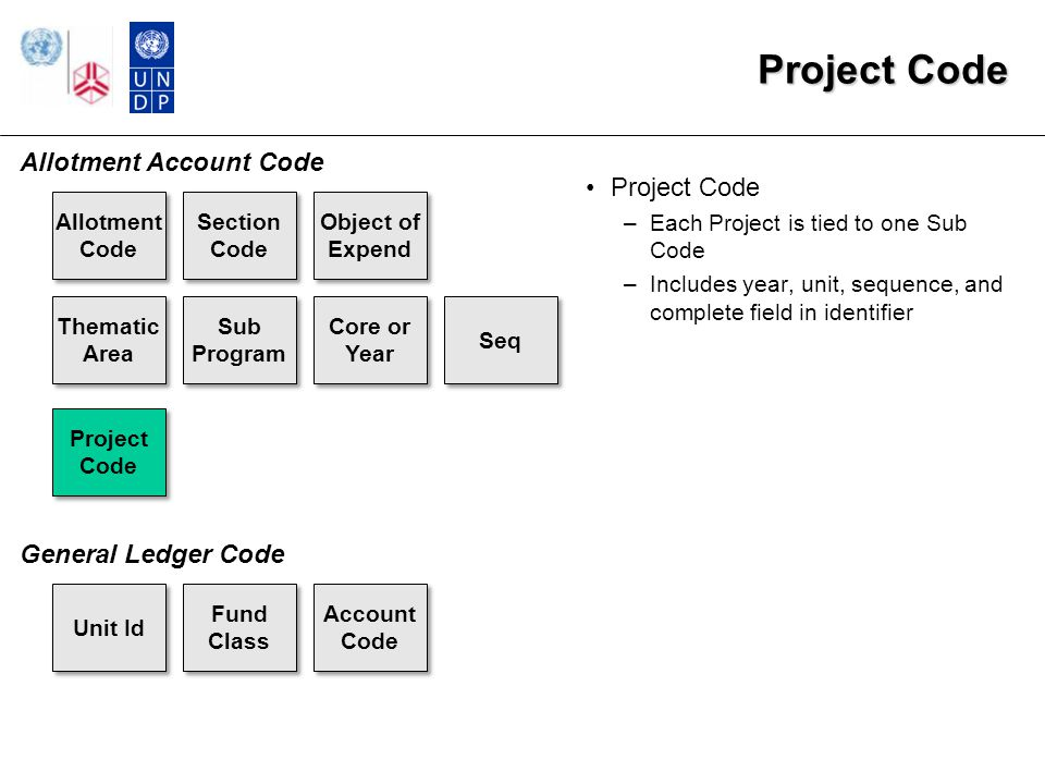 Project Code –Each Project is tied to one Sub Code –Includes year, unit, sequence, and complete field in identifier Allotment Code Section Code Object of Expend Thematic Area Sub Program Core or Year Seq Project Code Fund Class Account Code Allotment Account Code General Ledger Code Unit Id