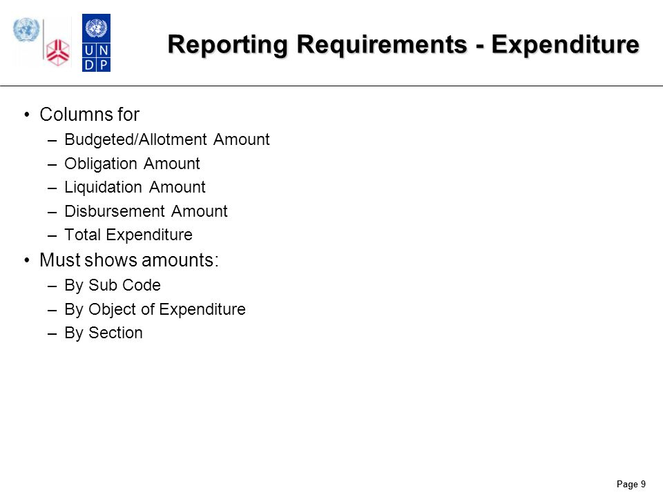 Reporting Requirements - Budgets Budgeted Amount –Amount approved by UNU Council Allotment Amount –Current budget allotment –Could be higher than Budgeted Amount due to supplemental approval of budget Budgets include –Allotment Code –Section Code –Sub Code –Project Code (optional) –Object of Expenditure Page 10