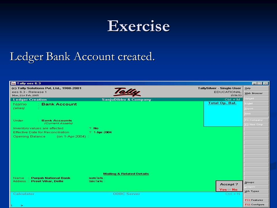 Exercise Ledger Bank Account created.