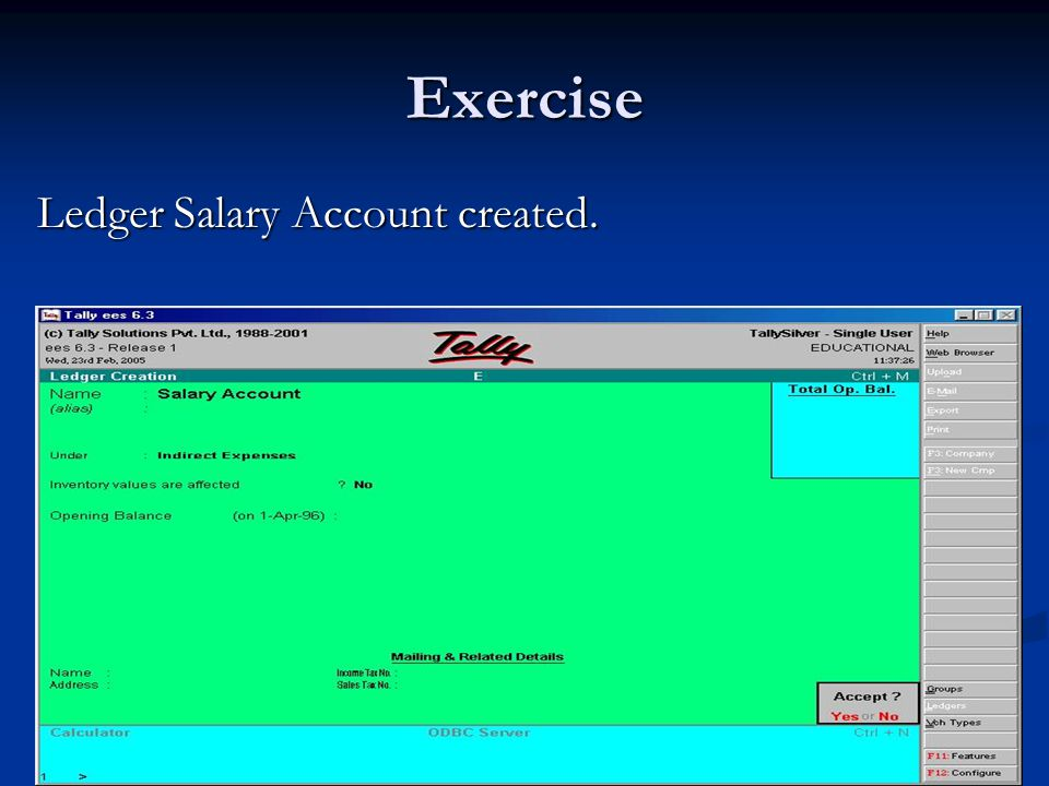 Exercise Ledger Salary Account created.