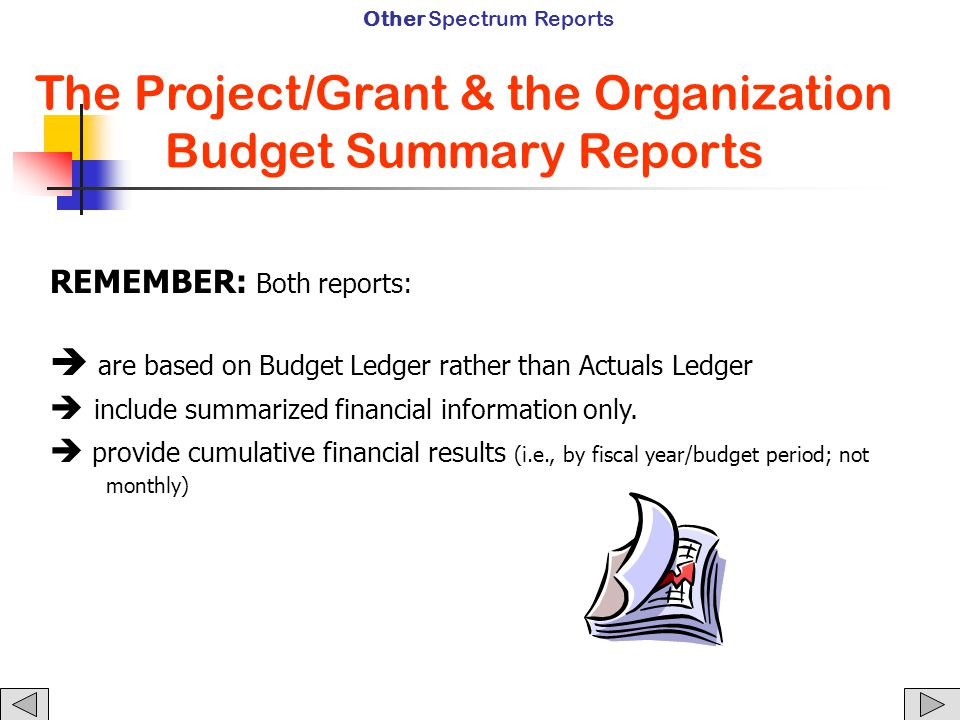 REMEMBER: Both reports:  are based on Budget Ledger rather than Actuals Ledger  include summarized financial information only.