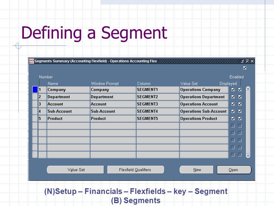 Defining Segments (N)Setup – Financials – Flexfields – key – Segment (B)Open