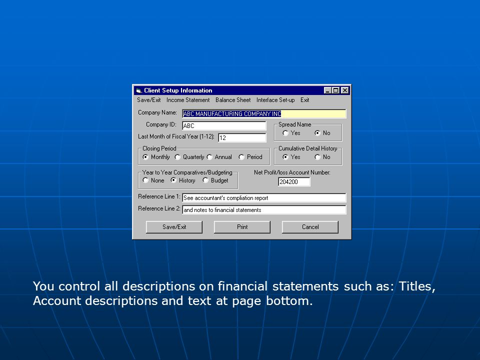 You control all descriptions on financial statements such as: Titles, Account descriptions and text at page bottom.