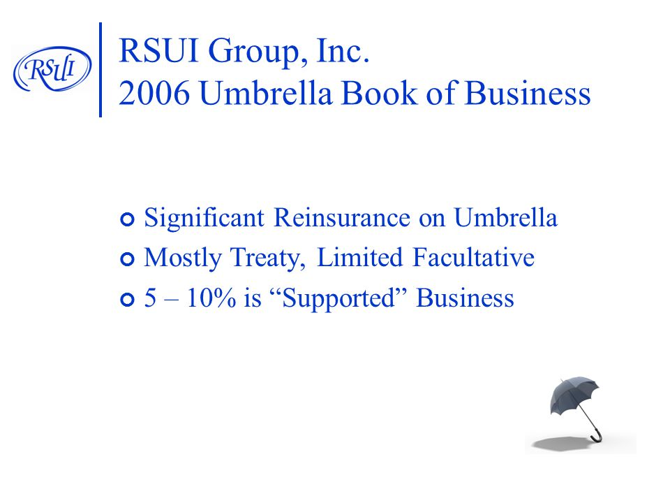 RSUI Group, Inc.