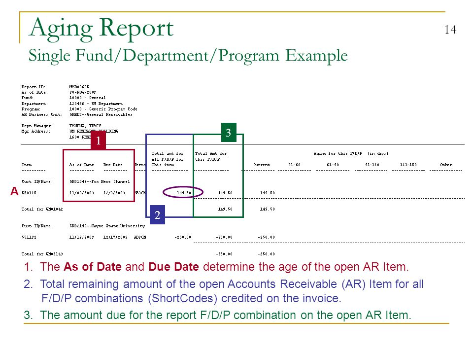 14 Aging Report Single Fund/Department/Program Example 2.