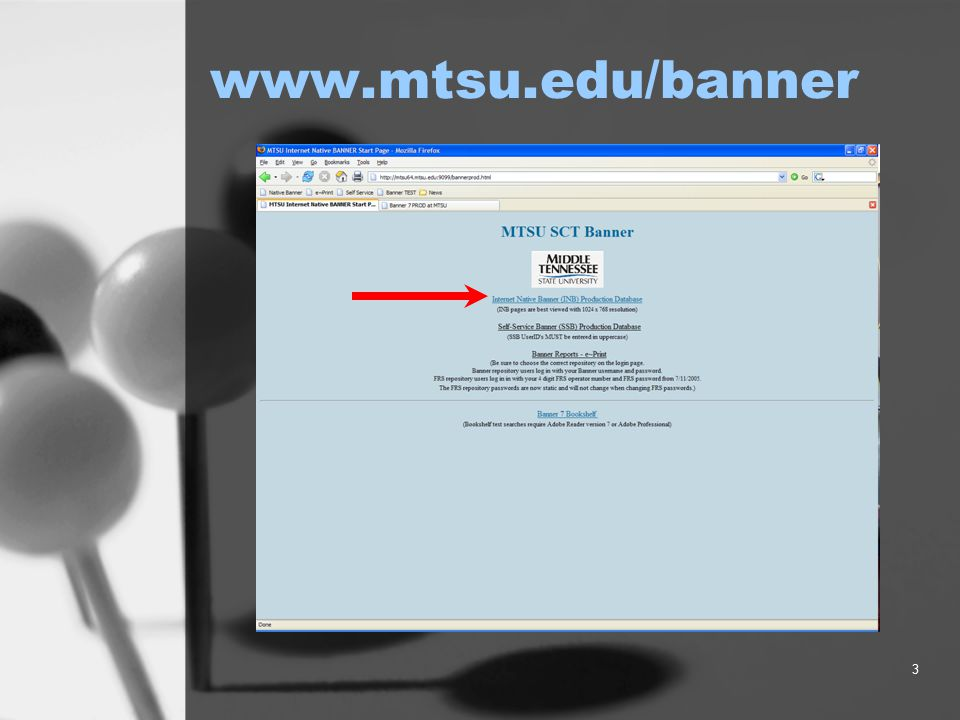 3 www.mtsu.edu/banner