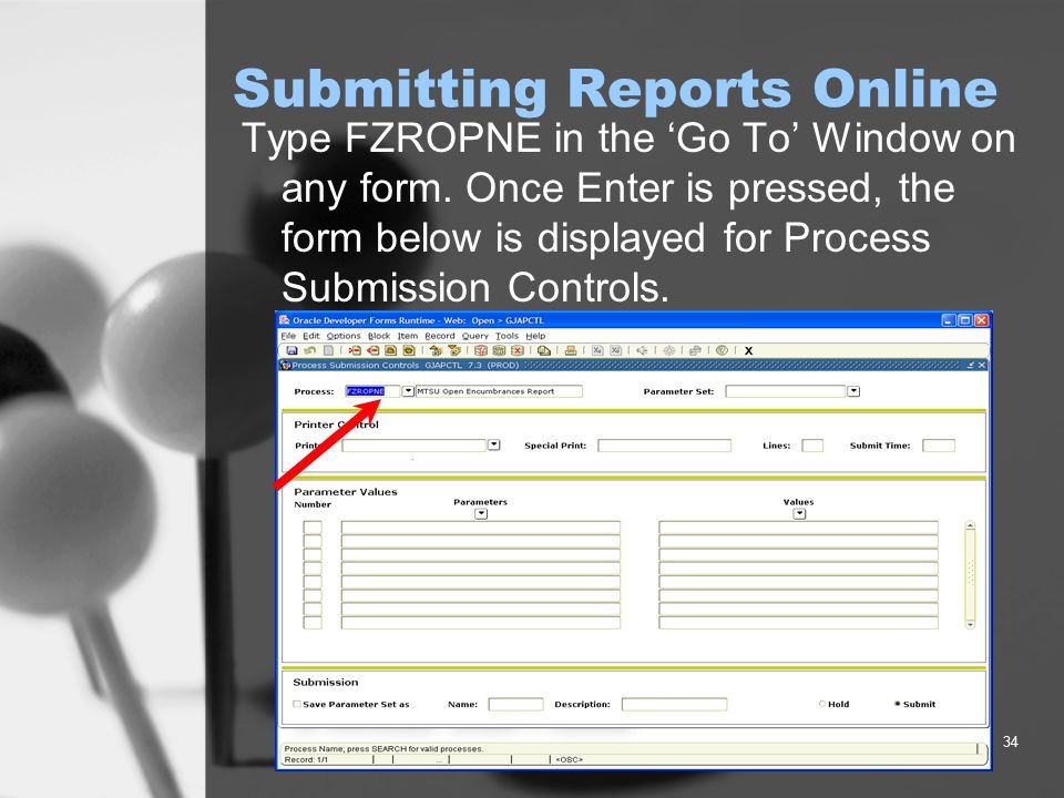 34 Submitting Reports Online Type FZROPNE in the 'Go To' Window on any form. Once Enter is pressed, the form below is displayed for Process Submission