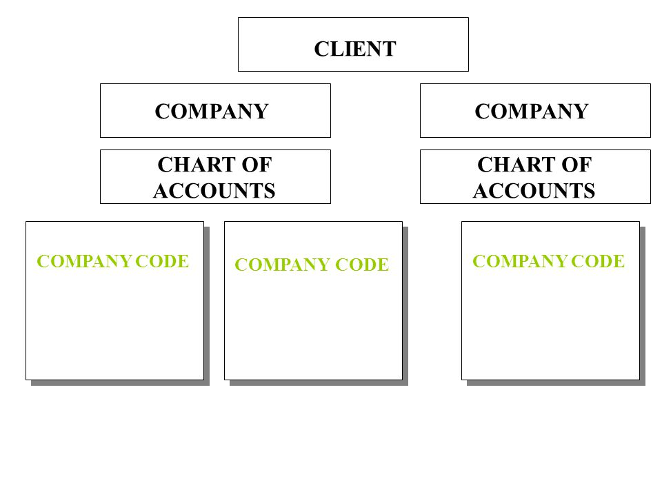 COMPANY CHART OF ACCOUNTS COMPANY CODE