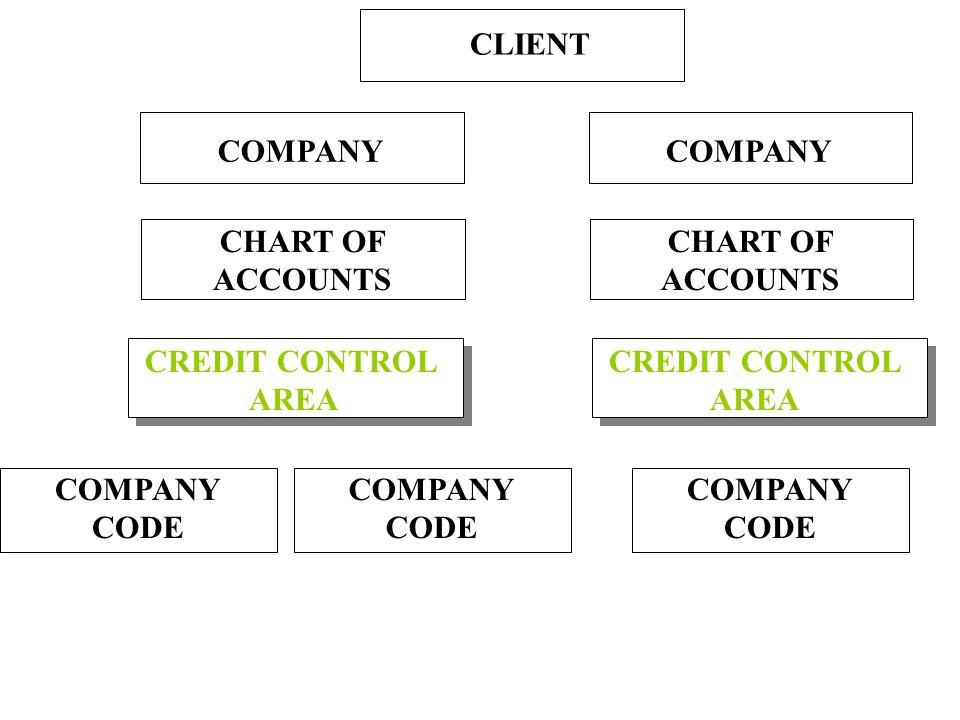 CLIENT CHART OF ACCOUNTS COMPANY CODE COMPANY CREDIT CONTROL AREA CREDIT CONTROL AREA